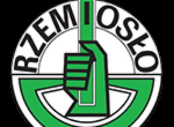 Logo-Rzemioslo