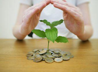 money-back-up-4518407_1920