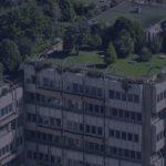 dach-zielony
